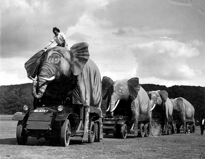 Фотостранности на исторических снимках из архива Роба Муриса