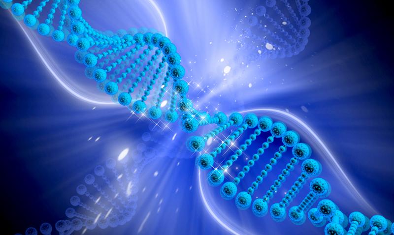 Необычные гены: на что они запрограммированы