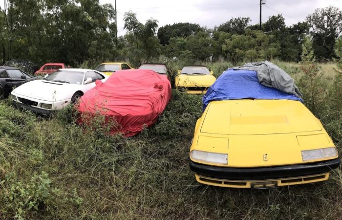 Поле с заброшенными автомобилями Ferrari в США