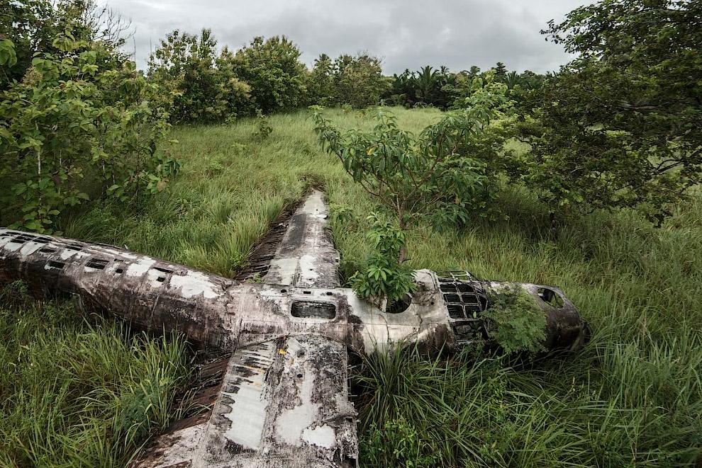 Удачно упавшие самолеты на снимках немецкого фотографа