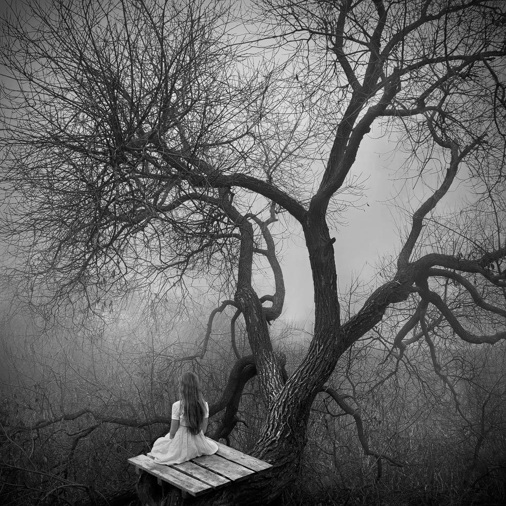 «Белая тишина» от белорусского фотографа Павла Терешковца