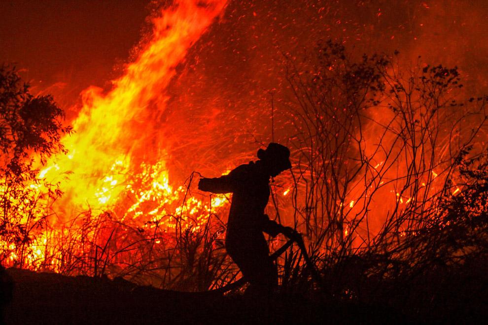Пожары в Индонезии 2019