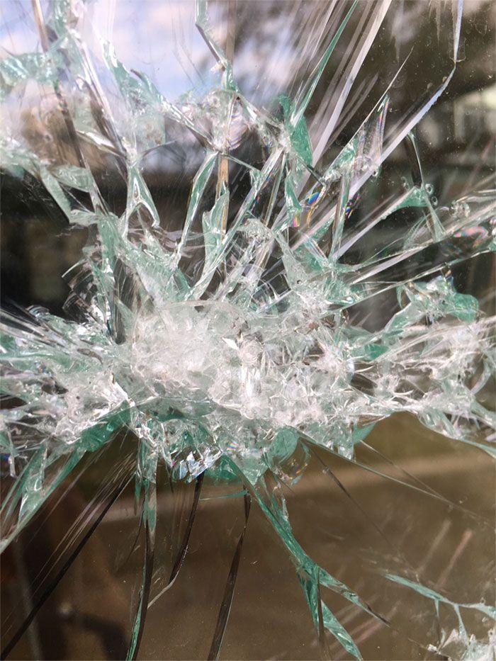 Художник зарабатывает, красиво разбивая витрины