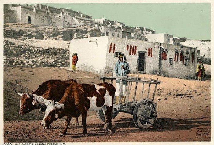 Жизнь коренных народов США на почтовых открытках XX века
