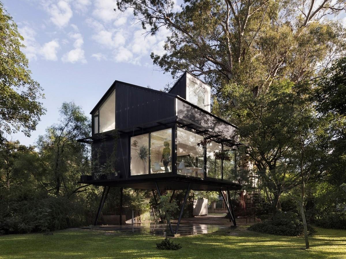 Чёрный домик на дереве в Аргентине