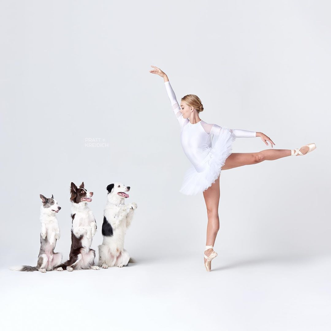 Снимки танцоров с собаками в фотопроекте