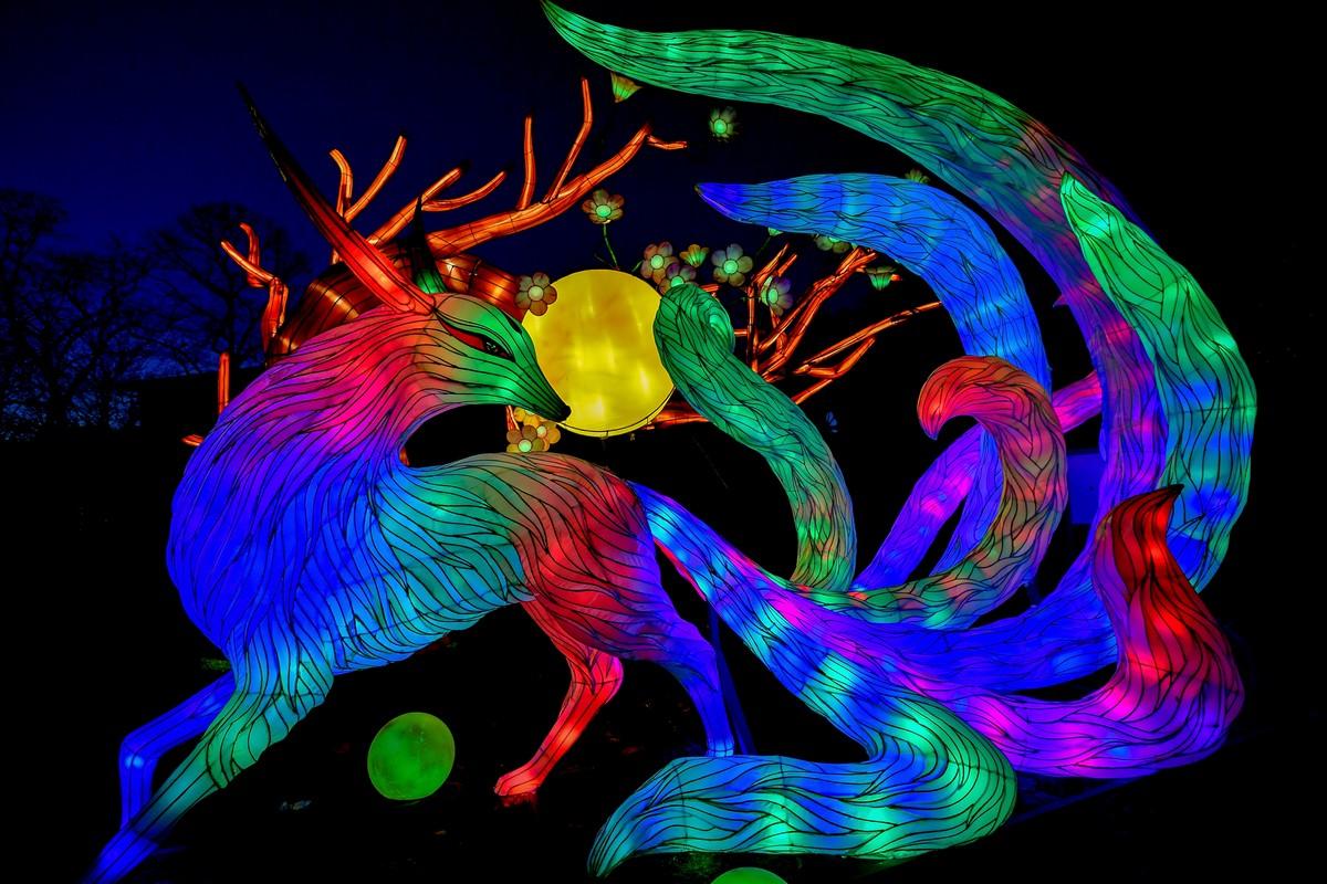 Фестиваль света China Light Festival в Кельнском зоопарке