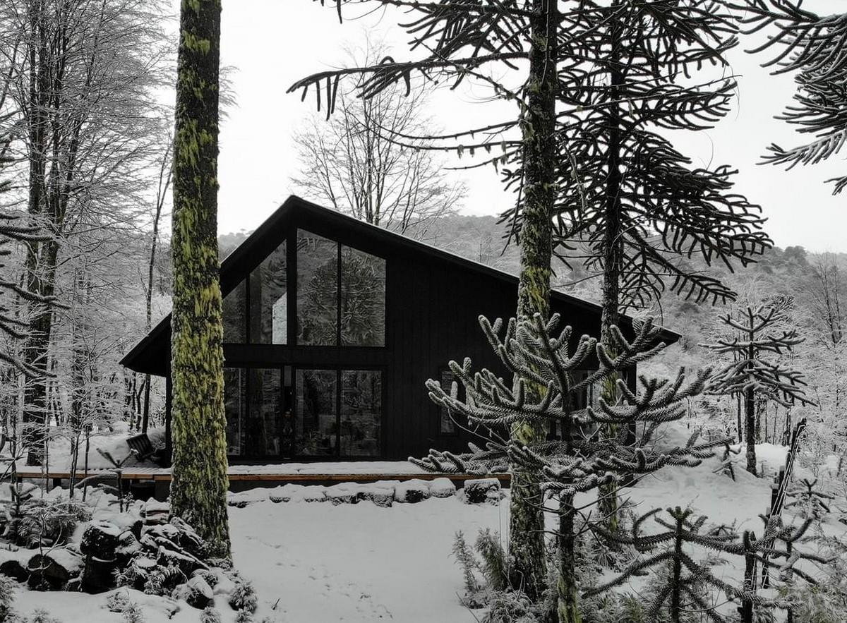 Загородный дом в лесу Чили