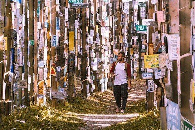 90 000 дорожных указателей собрано в одном канадском лесу