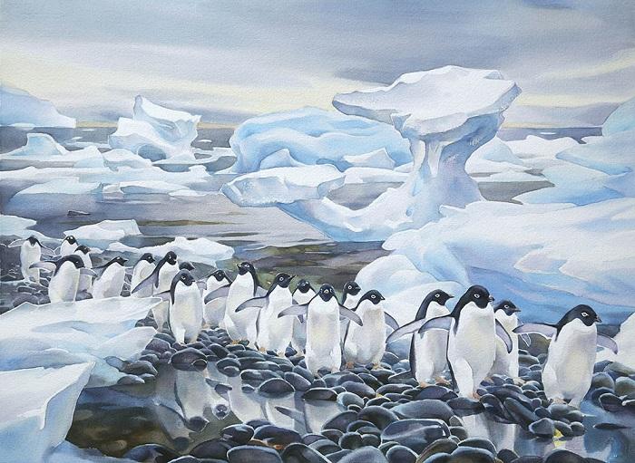 Что нового люди узнали после открытия Антарктиды