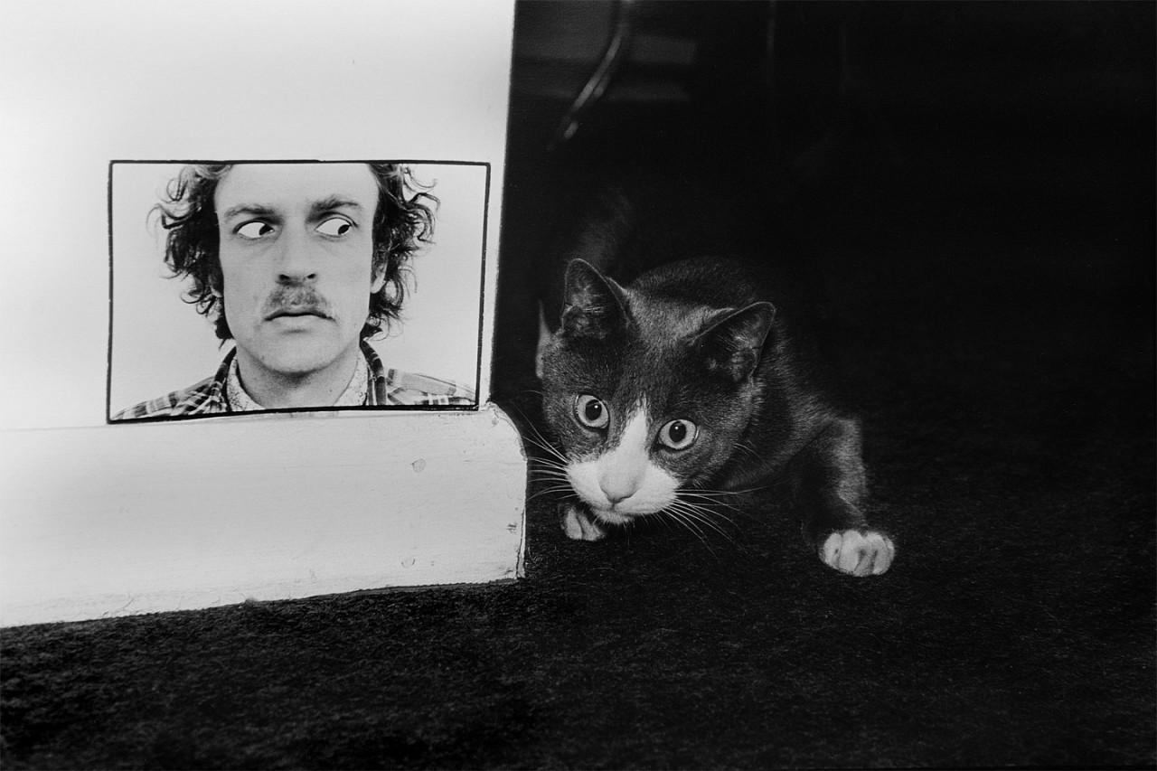 «Эрни: мемуары фотографа» — книга, посвященная коту
