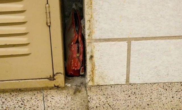 Капсула времени — сумка школьницы, потерянная в 1960-х годах в США