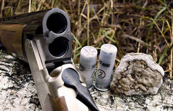 Насколько опасны патроны для ружья с солью