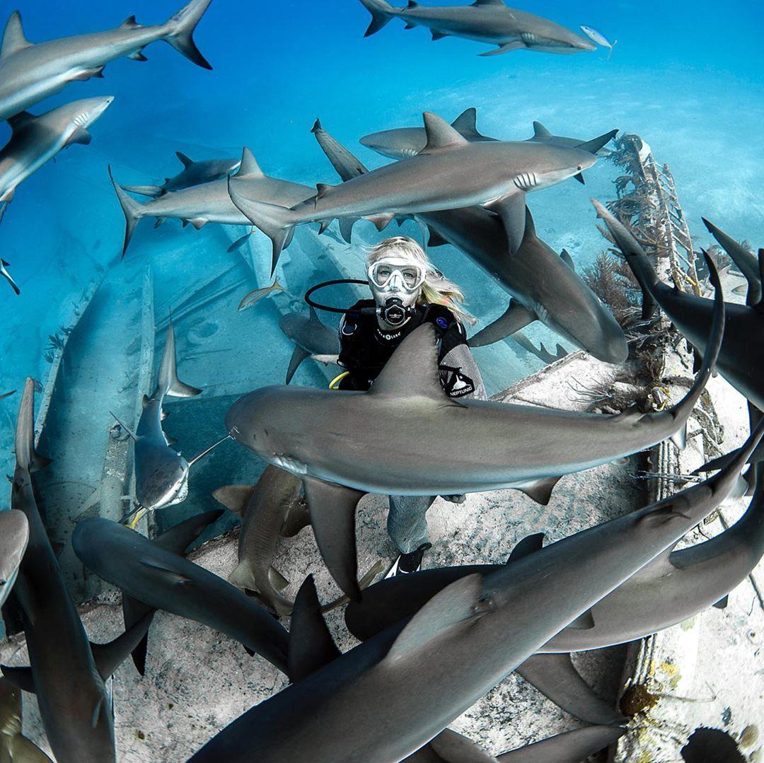 Замечательные подводные снимки от Нади Али