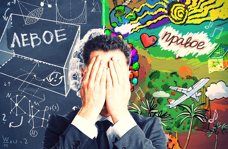 Правда ли, что разные полушария мозга отвечают за логику и творчество