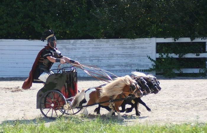 Сколько «лошадиных сил» может быть у одной лошади