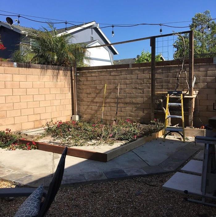 53-летний мужчина из Калифорнии построил кофейню на заднем дворе