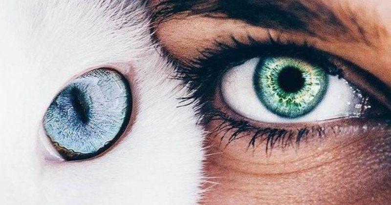 Что глаза могут рассказать о человеке