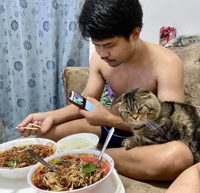 Женщина документирует, как кот просто «украл» у неё мужа