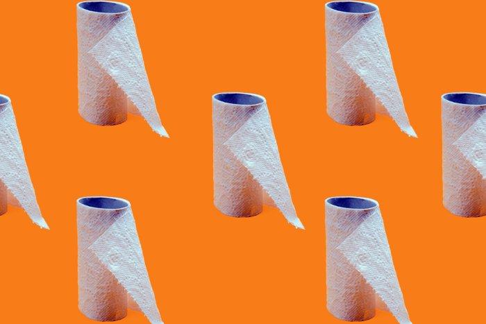 Какими средствами пользовались до появления туалетной бумаги