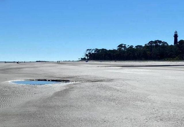 Пара на пляже нашла огромный зуб «морского монстра» из далекого прошлого