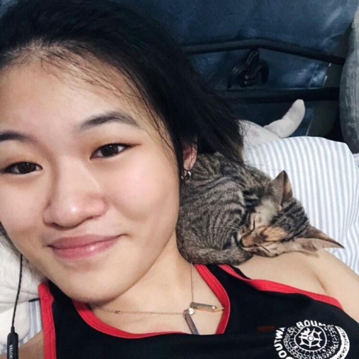 Котики спят возле своих хозяев и на них