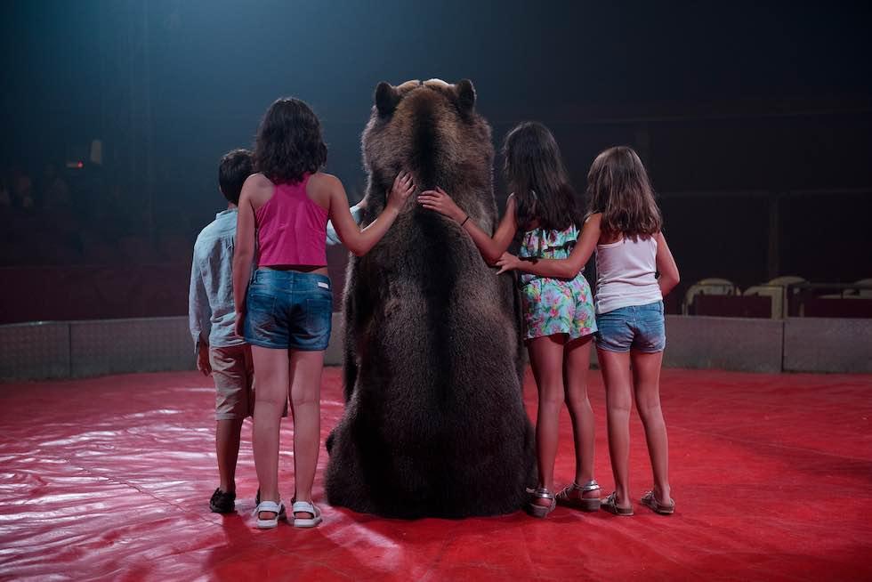 Скрытый мир страданий животных в фотокниге