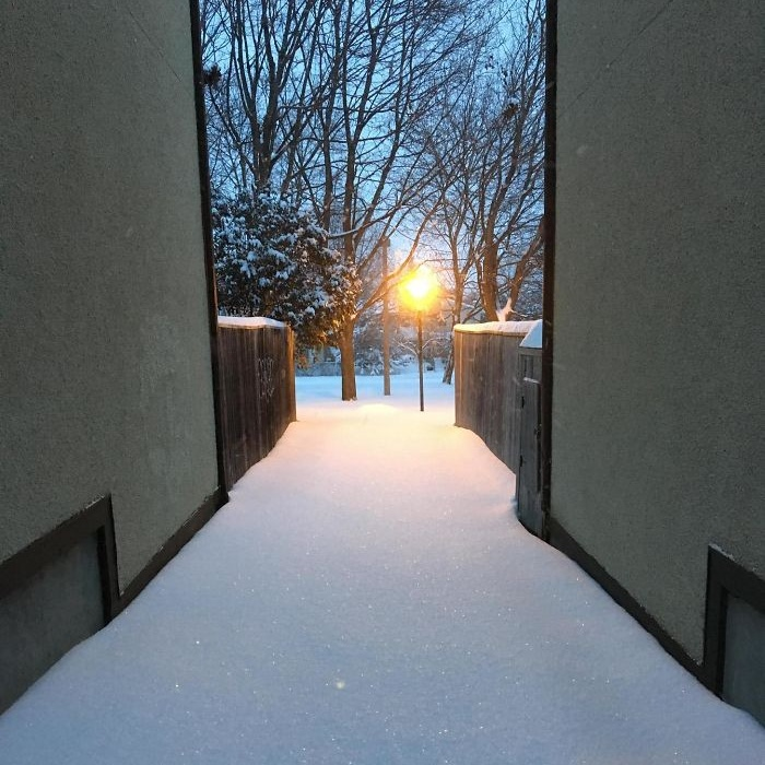 Зима дарит идеальные картины для перфекционистов