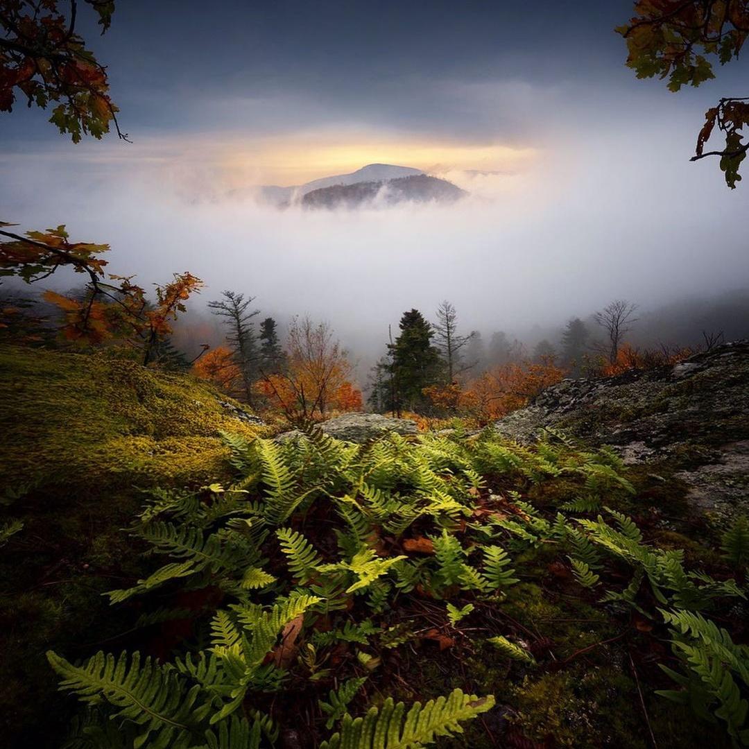 Атмосферные пейзажные снимки от Филиппа Хребенда