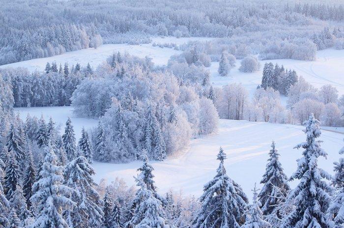 Почему в России холодная зима, но жаркое лето?