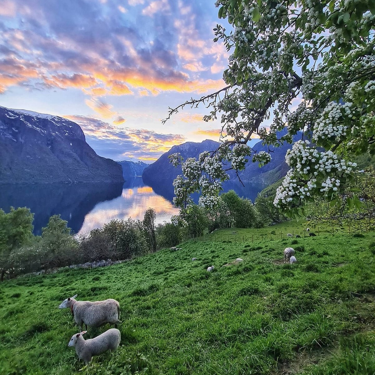 Удивительные норвежские просторы на снимках Оле Моена