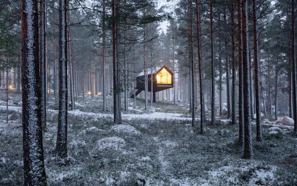 Чёрный домик для отдыха в лесу Финляндии