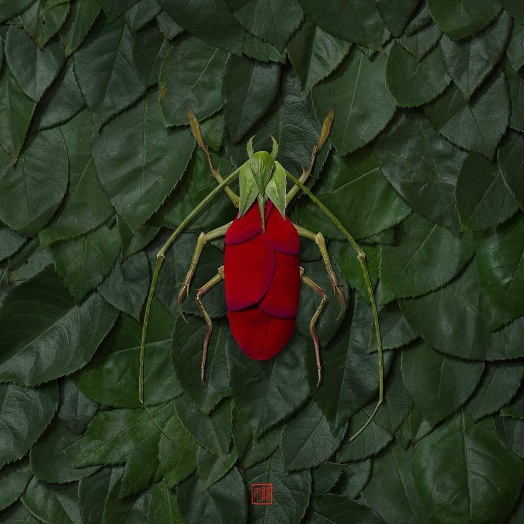 Цветочные фигурки животных от Раку Иноуэ