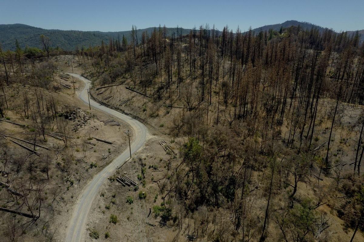 Сильнейшая засуха в штате Калифорния