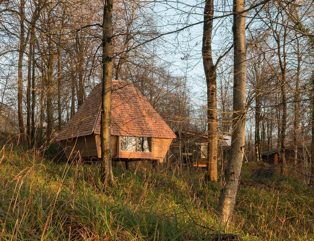 Небольшой дом в лесу Великобритании