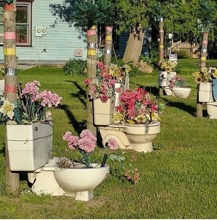 Максимально странные и причудливые сады, лужайки и дворы людей
