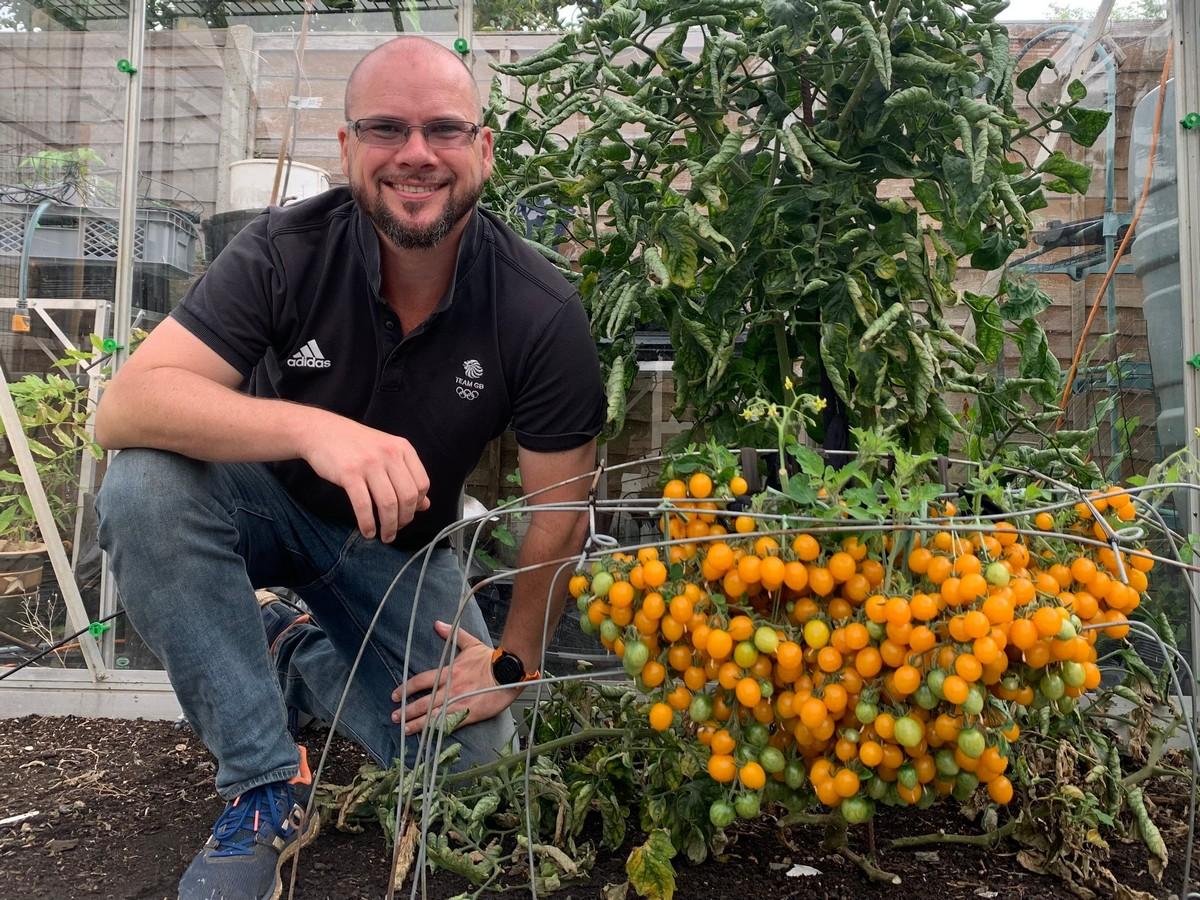 Садовод вырастил 839 помидоров на одном кусте